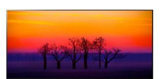 LG 65 inch OLED TV - B8